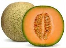 musk-melon-kharbuja