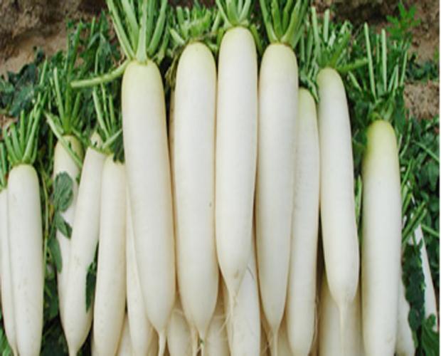 Image result for मूली खा