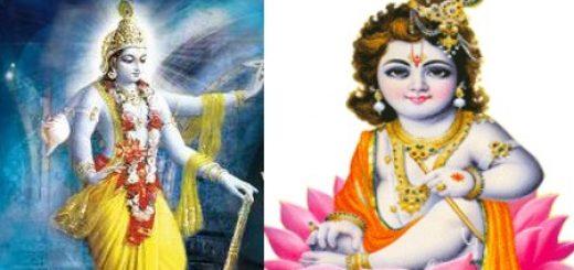 rishi satta worship devotion spirituality real alien ufo universe indian divine saint sadhu sanyasi baba radha krishna braj vraj vrindavan